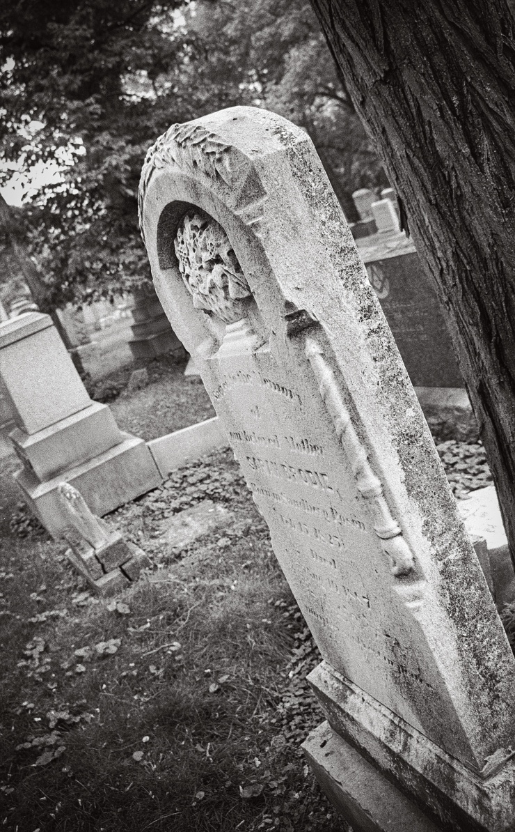 Jewish-Graceland-1-1995