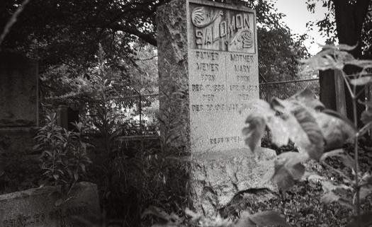 Jewish-Graceland-2-1995