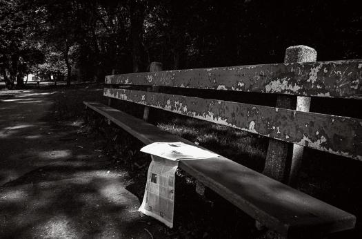 Park-Bench-1995